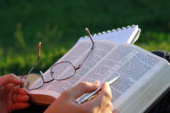 Studi biblici, corsi e seminari